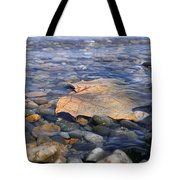 Beauty On The Shore Tote Bag