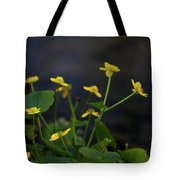 Beauty On The Waters Edge Tote Bag