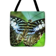 Beauty On The Wing Tote Bag by Lori Frisch