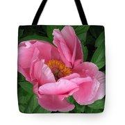 Beauty Revealing Itself  Tote Bag