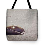 Beauty Star Tote Bag