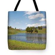 Beauty Swan Lake  Tote Bag