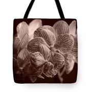 Beauty Up Close 4 Sepia Tote Bag