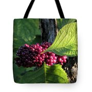 Beautyberry 2 Tote Bag