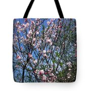 Beautiful Spring. Blooming Tree 2 Tote Bag