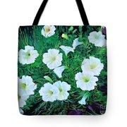 Beauyiful Petunias Tote Bag