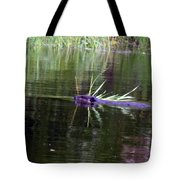 Beaver Carrying A Reed Tote Bag