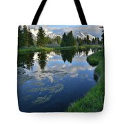 Beaver Dam At Schwabacher Landing Tote Bag