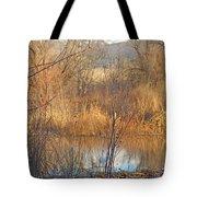 Beaver Dam At Sunset In Colorado            Tote Bag