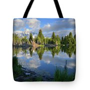 Beaver Dam Reflection In Grand Teton Np Tote Bag
