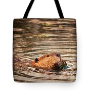Beaver Feeding Tote Bag
