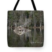 Beaver Lodge Reflections Tote Bag