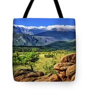 Beaver Meadows In Rocky Mountain National Park Tote Bag