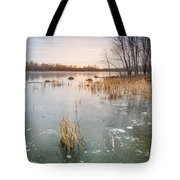 Beaver Place Tote Bag