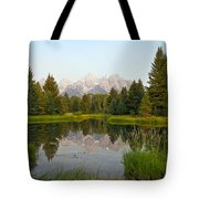 Beaver Pond At Schwabacher Landing Tote Bag