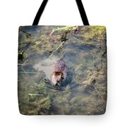 Beaver Spotted The Great Beaver Escape 01 Tote Bag