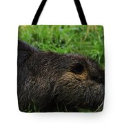 Beaver Whiskers Tote Bag