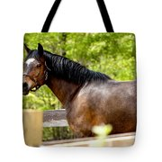 Becky Tote Bag