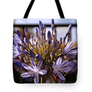Becoming Beautiful Tote Bag