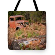 Bed Of Ferns Tote Bag