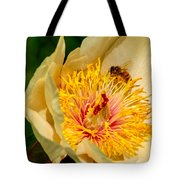 Bee And A Pale Yellow Early Glow Peony Tote Bag