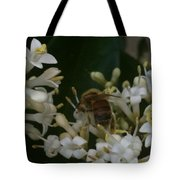 Bee And Small White Blossoms Tote Bag
