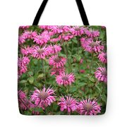 Bee Balm Beauties Tote Bag