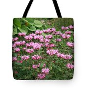 Bee Balm Garden Tote Bag