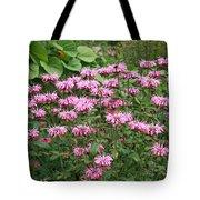 Bee Balm Garden Tote Bag