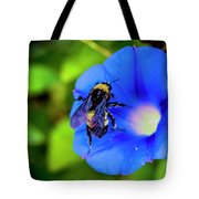 Bee Covered With Pollen On Morning Glory 3521t Tote Bag
