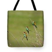 Bee Eaters  Tote Bag