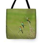 Bee Eaters In The Sun Tote Bag