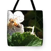 Bee On Blackberry Blossom Tote Bag