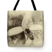 Bee On Citrus Flower Tote Bag