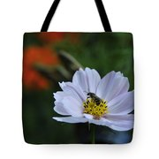 Bee On Daisy Tote Bag