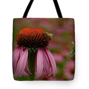 Bee On Echinacea Tote Bag
