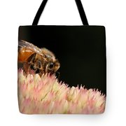 Bee On Flower 2 Tote Bag