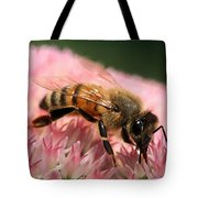 Bee On Flower 6 Tote Bag