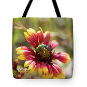 Bee On Gaillardia Tote Bag