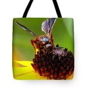Bee On Lazy Susan 3 Tote Bag