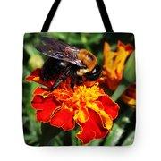 Bee On Marigold Tote Bag by William Selander