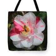 Bee On White And Pink Camellia Tote Bag