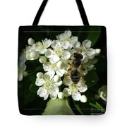 Bee On White Flowers 2 Tote Bag