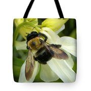 Bee On White Tote Bag