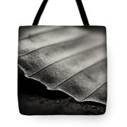 Beech Leaf Detail #1 Tote Bag