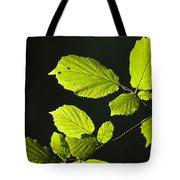 Beech Twig Detail Tote Bag