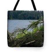 Beecraigs Loch. Tote Bag