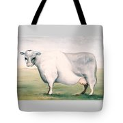 Beef Holocaust I Tote Bag