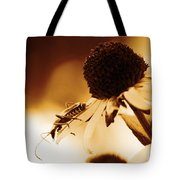 Beetle And Black Eyed Susan Tote Bag