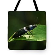 Beetle At Sunrise Tote Bag